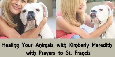 Animal Healing Event